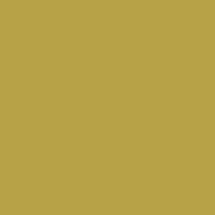 SilikonColor Baumit 5 l - odstín 0121 BAUMIT